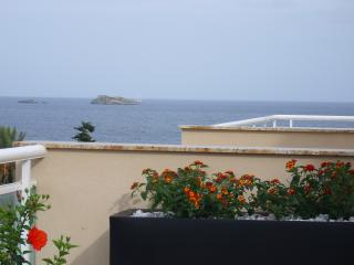 Fantastic sea view from the terrace
