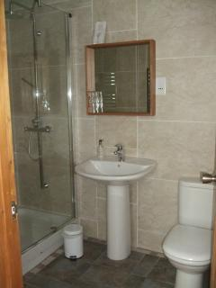 The Ayrshire at Packridge shower room with walk in shower with multi function monsoon shower