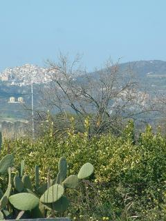 View of Old Stignano-from complex