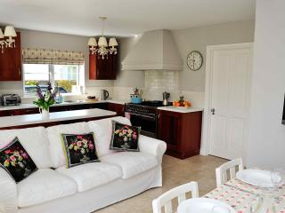 Large kitchen area with all modern cons and big comfy sofa to relax on.