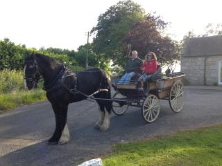 Horse & cart passing cottage, a common occurrence in the summer months