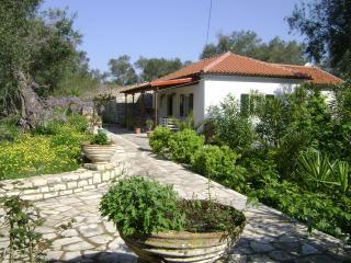 Villa Elvira, Magazia