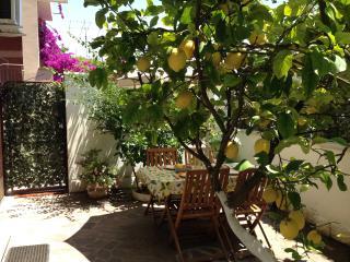 lemons and lemons..