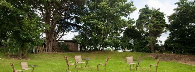 Grassed Garden Area