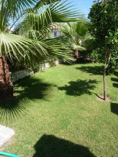 Palm villa's private garden