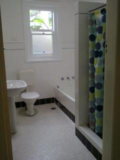 Authentic 1950s retro bathroom with full sized bath tub