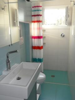 Blue shower room