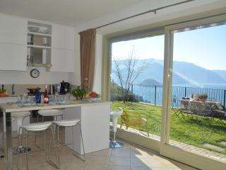Modern open plan kitchen