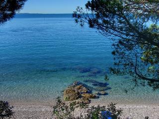 Ginestre Blu, Trieste