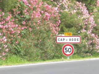 As you enter cap d' agde, your holiday begins sun sea and entertainment