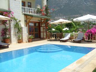 Villa Sovalye: 3 double bedrooms, 3 bathrooms, large roof terrace & private pool