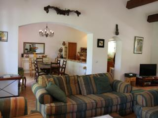A global view of the beautifully furnished living area, dining room and kitchen