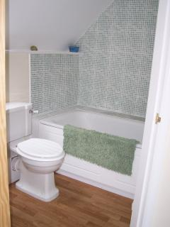 Bathroom with shower and handrail, WC and basin