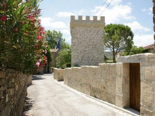 Luxurious accommodation quiet area vignards all around in Cathar country