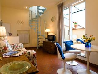1 bedroom apartment with roof terrace in Florence