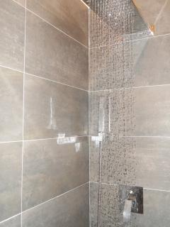 The design bathroom, with rain effect walk in shower