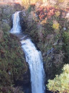 Local attraction Glen Ashdale Falls