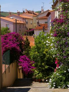 Banyuls Old Town - on route from House to Banyuls Beach