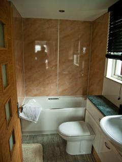 Luxury bath/shower room