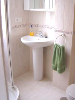Shower room - Shower, washbasin and toilet