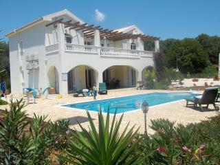 Villa Diana large villa with private pool., Spartia
