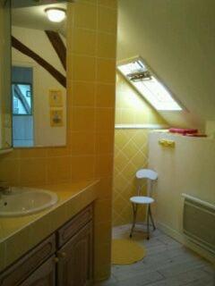 le studio - la salle de bain-douche