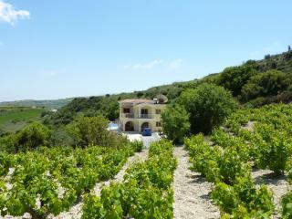 Villa Vouno Thea