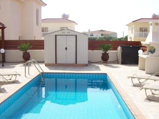 The pool and BBQ area