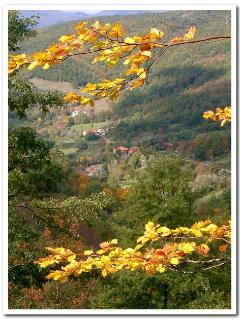 autumn view on Doccione di Sotto