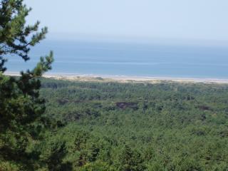 Hardelot beach dunes