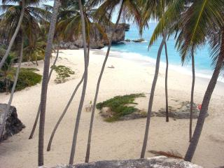 beautiful Bottom Bay beach - perfect for picnic with fresh coconuts from the tree