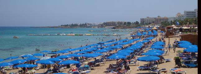 Or spend the day at Fig Tree Bay!
