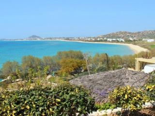 Villa Blue on the beach Villa Paradise Plaka-Naxos