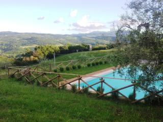 View of the swimming pool and vally