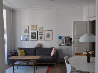 Spacious Copenhagen apartment near Assistens cemetery