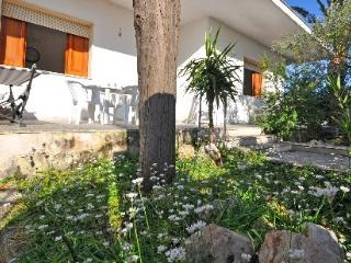 Villa Iris