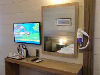 Satellite Led TV, dressing table, hair dryer, kettle