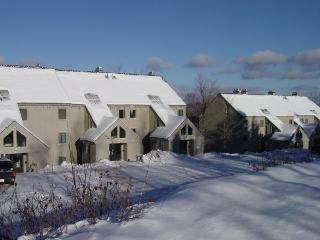 Whiffletree Condo F4 - Two bedroom One bathroom Shuttle To Slopes/Ski Home, Killington