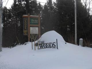 Woods Resort & Spa E7 - Two bedrooms Two and a half bathrooms Health Club Privileges, Killington