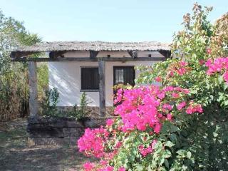 Finca Los Alamos Casa Jardin, Los Canos de Meca
