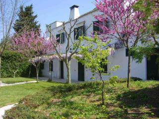 Caratteristica residenza in villa pugliese