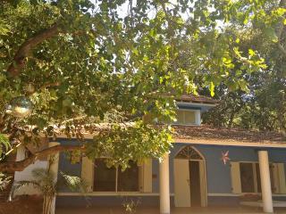 Villa OM, Anjuna