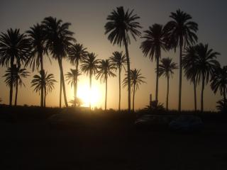 TORREVIEJA, EL PARAISO