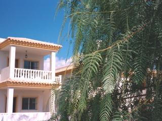 Our place in the sun, Castalla