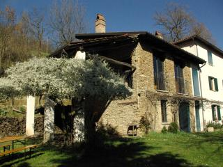 Italian wine country Villa - White truffles &