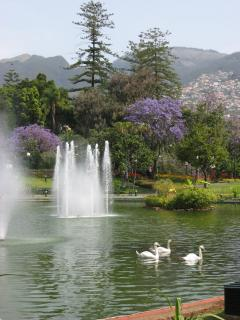 Santa Catarina Park nearby