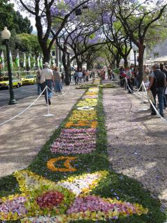 Funchal Flower festival