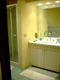 Large modern bathroom with stall shower