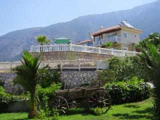 Mountain View Villa, Ovacik