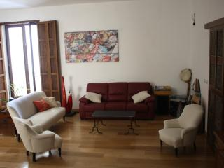 big vintage apartment in  palermo historic center